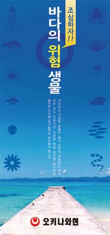 海の危険生物パンフレット韓国語版